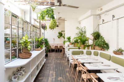 NYC Dining Guide: The Hottest New Restaurants Of Fall 2018