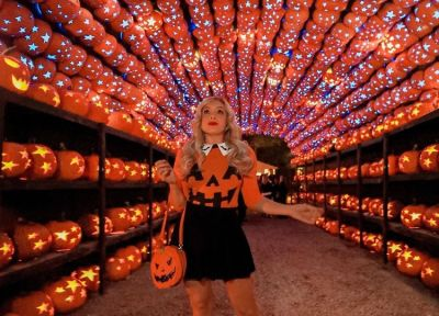 10 Spooky (& Socially Distanced) Things To Do In New York This October