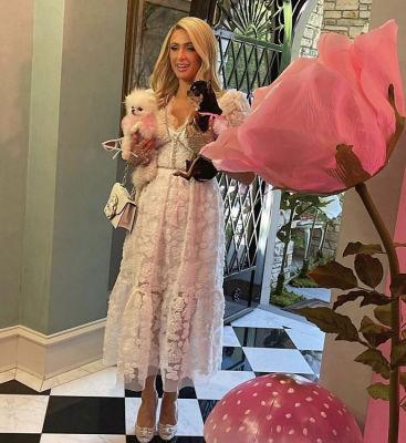 Inside Paris Hilton's Alice In Wonderland-Themed Bridal Shower