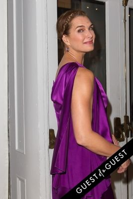 brooke shields in NY Academy of Art's Tribeca Ball to Honor Peter Brant 2015