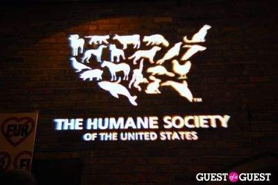 The Humane Society of the United States & The Art Institutes Sixth Annual Cool vs. Cruel Awards Ceremony