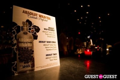 Absolut Vodka Celebrates the Armory Show