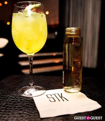 allison prescott in STK Happy Hour
