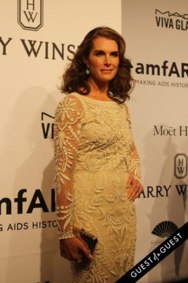 brooke shields in amfAR Gala New York
