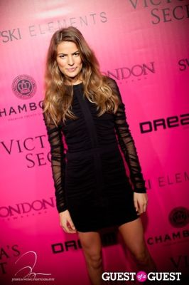 cameron russell in Victoria's Secret 2011 Fashion Show After Party