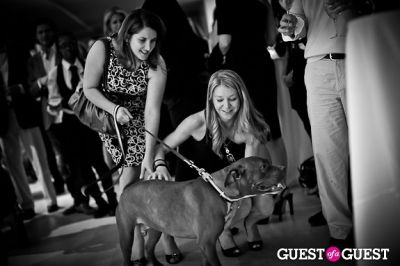 delphine lincy in Love 4 Animals Fundraiser for NYC Shelter Animals