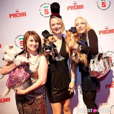 karen biehl in Beth Ostrosky Stern and Pacha NYC's 5th Anniversary Celebration To Support North Shore Animal League America