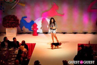 kaitlyn ferrara in Fashion For Paws 2012