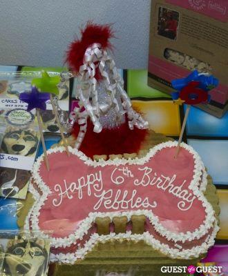 Pebble Iscious and Z Zee's Disco Birthday Bash
