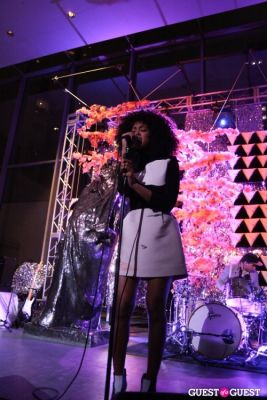 solange in The Armory Party at the MoMA