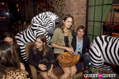 matt wilkin in Safari in the City
