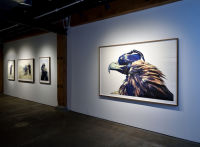 Eagle Hunters exhibition opening at Joseph Gross Gallery #127