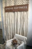 Splendid launches Spread Softness Campaign #101