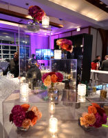 25th Annual NYC Heart and Stroke Ball (3) #313