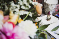 Guest of a Guest and Stone Fox Bride Toast Bride-to-Be Valerie Boster (Part 2)  #71