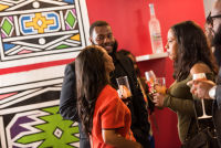 Belvedere Celebrates (RED) and Partnership with South African Artist, Esther Mahlangu at the Dusable Museum in Chicago #239
