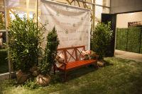The Royal Oak Foundation's FOLLIES (2) #90