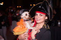 Bow Wow Beverly Hills Presents… 'A Night in Muttley Carlo' with James Bone, the Amanda Foundation Annual Halloween Fundraiser  #33