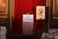 AUDUBON New York Presents The 2016 KEESEE Luncheon #12