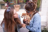 Mowgli Rescue & Rahicali's Furry Friendsgiving at The Butcher's Daughter #18