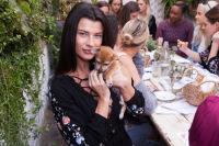 Mowgli Rescue & Rahicali's Furry Friendsgiving at The Butcher's Daughter #22