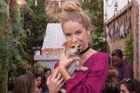 Mowgli Rescue & Rahicali's Furry Friendsgiving at The Butcher's Daughter #26