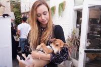 Mowgli Rescue & Rahicali's Furry Friendsgiving at The Butcher's Daughter #35