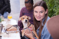 Mowgli Rescue & Rahicali's Furry Friendsgiving at The Butcher's Daughter #62