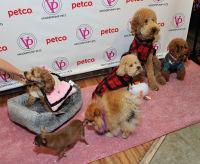 Vanderpump Pets launch event #13