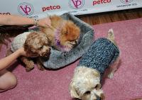 Vanderpump Pets launch event #22
