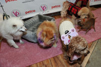Vanderpump Pets launch event #33