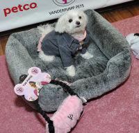 Vanderpump Pets launch event #54