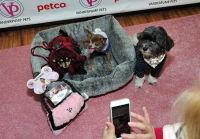 Vanderpump Pets launch event #57