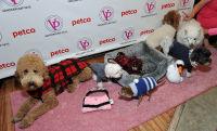 Vanderpump Pets launch event #63
