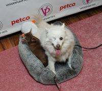 Vanderpump Pets launch event #70