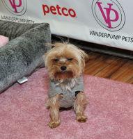Vanderpump Pets launch event #97