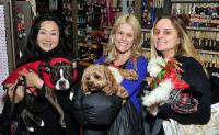 Vanderpump Pets launch event #115