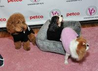 Vanderpump Pets launch event #121