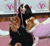 Vanderpump Pets launch event #130