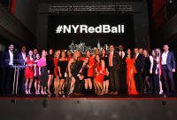 The 2017 Young Professionals Red Ball #155