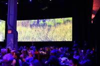 Malaria No More 11th Annual Gala #248