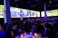 Malaria No More 11th Annual Gala #258