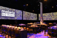 Malaria No More 11th Annual Gala #349