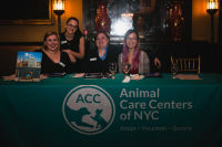 10th Annual Animal Care Spring Fling  #216