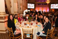 2017 Audubon Women in Conservation Luncheon and Rachel Carson Award #228
