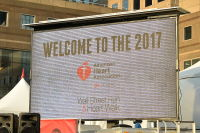 The 2017 American Heart Association Wall Street Run & Heart Walk #101