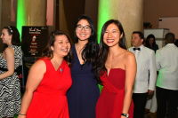 American Heart Association Presents The 2017 Heart and Stroke Ball #371