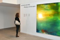 Anderson Contemporary presents JACINDA BAYNE/Merging Landscapes #22