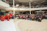 Lunar New Year 2018 at The Shops at Montebello #28