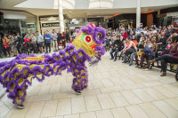 Lunar New Year 2018 at The Shops at Montebello #30